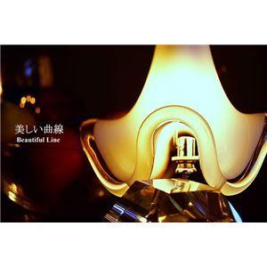 その他 ペンダントライト(吊り下げ型照明器具) ガラス製 〔リビング照明/ダイニング照明〕【電球別売】【代引不可】 ds-1677335