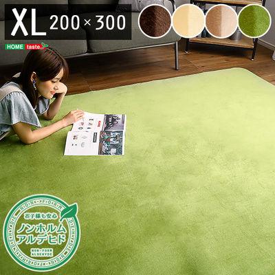 ホームテイスト 高密度フランネルマイクロファイバー・ラグマットXLサイズ(200×300cm)洗えるラグマット|ナルトレア (グリーン) FRG-XL-G