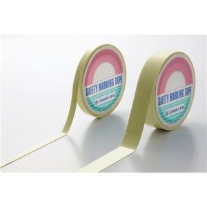 その他 高輝度蓄光テープ(超高輝度タイプ) SAF1005 幅:10mm ds-1714030