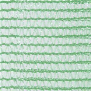 その他 メッシュフェンスP-G ■カラー:緑 ds-1717016