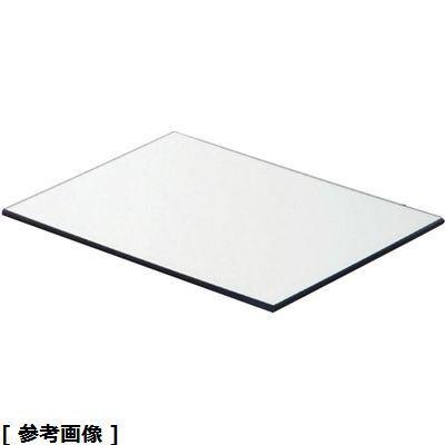 TKG (Total Kitchen Goods) アクリルブッフェトレイ長角ミラー(M6450 L) NBT0603