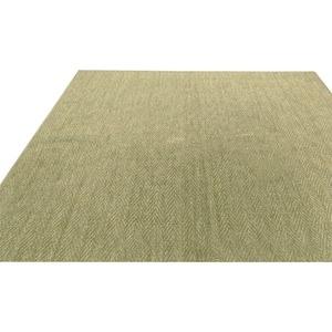 その他 フリーカット 抗菌 防臭 カーペット 絨毯 / 江戸間 8畳 352×352cm / グリーン 平織り 『シアトル』 九装 ds-1867858