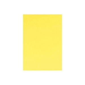 その他 (業務用10セット) キッズ カラー工作用紙 20枚入 クリーム ds-1913222