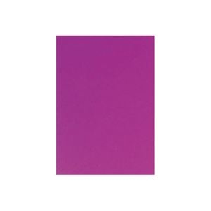 その他 (業務用10セット) キッズ カラー工作用紙 20枚入 紫 ds-1913224