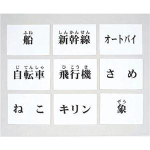 その他 DLM 言語訓練文字カード 生物・乗物 2214S-M ds-1915297