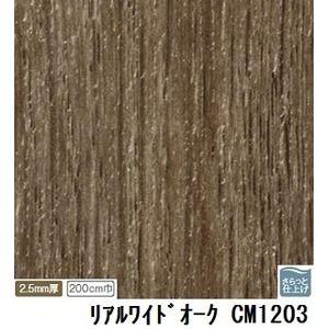 その他 サンゲツ 店舗用クッションフロア リアルワイドオーク 品番CM-1203 サイズ 200cm巾×2m ds-1921039
