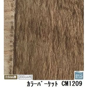 その他 サンゲツ 店舗用クッションフロア カラーパーケット 品番CM-1209 サイズ 200cm巾×2m ds-1921099