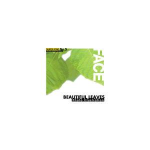 その他 写真素材 SUPER FINE No.5 BEAUTIFUL LEAVES (美しい葉) ds-67139
