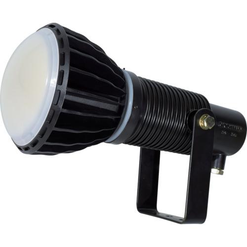 トラスコ中山 日動 LED安全投光器100W 常設型 ワイド 本体黒 ATLE100WBK50K