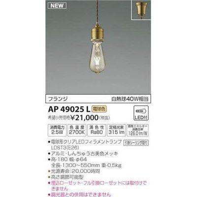 コイズミ ペンダント(LED[電球色]) AP49025L