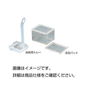 その他 (まとめ)染色用トレー【×10セット】 ds-1595033