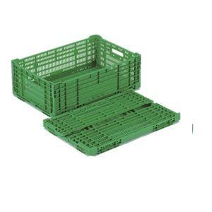 その他 【10個セット】 折りたたみコンテナー/オリコン 【RS-MM38】 グリーン 材質:PP ワンタッチ組立 ds-2041901