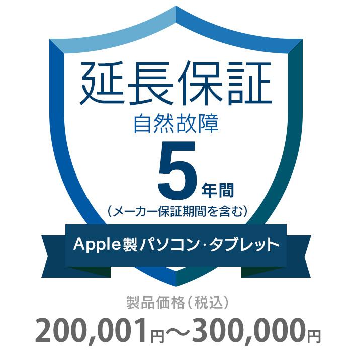 その他 5年間延長保証 自然故障 Apple社製品(パソコン・タブレット・モニタ) 200001~300000円 K5-SM-253424
