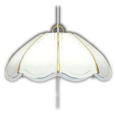 タキズミ LEDペンダントライト (~8畳) 昼光色 EV80055【納期目安:約10営業日】