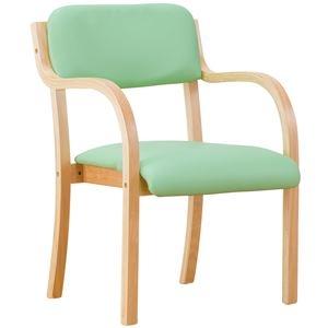 その他 立ち座りサポートチェア/椅子 【グリーン 2脚組】 肘付き スタッキング可 張地:合成皮革/合皮 〔業務用 家庭用 オフィス〕【代引不可】 ds-2091360