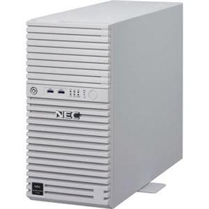 その他 NEC NEC Express5800/T110i(4C/E3-1220v6/8G/2HD3-W2012R2) ds-2092424 その他 ds-2092424, 近江八幡市:867e72fb --- colormood.fr