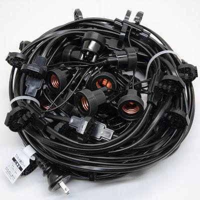 長谷川製作所 提灯コードライトタイプ CCA220L20P10【納期目安:2週間】