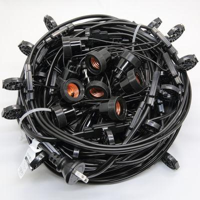 長谷川製作所 提灯コードライトタイプ CCA320L30P10【納期目安:2週間】