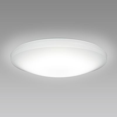 NEC LEDシーリングライト ~12畳 SLDC12579【納期目安:1週間】