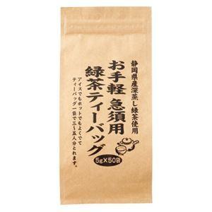 その他 (まとめ) 大井川茶園 お手軽急須用緑茶ティーバッグ5g*50袋 3563【×10セット】 ds-2157337