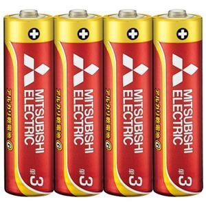 その他 (まとめ) 三菱電機 三菱電機アルカリ乾電池 単3形 40本【×5セット】 ds-2158466