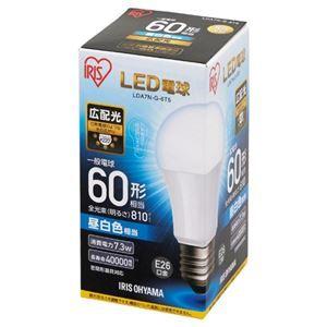その他 (まとめ) アイリスオーヤマ LED電球60W E26 広配光 昼白色 LDA7N-G-6T5【×10セット】 ds-2158532