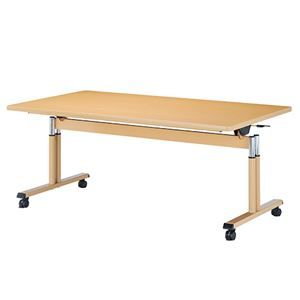 【送料無料】NK 折畳式昇降テーブル FITJ-1690S (ds2160461) その他 NK 折畳式昇降テーブル FITJ-1690S ds-2160461