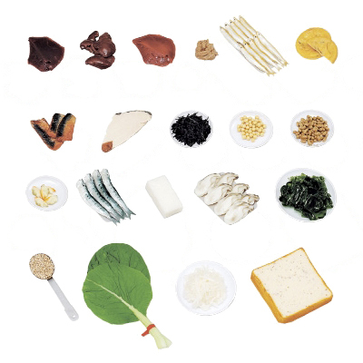 その他 鉄分を多く含む食品モデル(20品) 70-A(ジシャクツキ) 24-4512-00【納期目安:1週間】