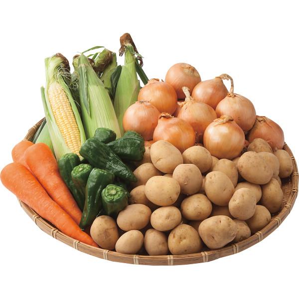その他 北海道夏野菜セット 2458510001501