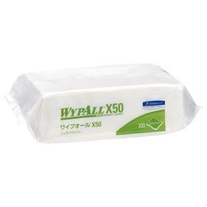 その他 (まとめ)日本製紙クレシア ワイプオールX50 ハンディワイパー 100枚入【×50セット】 ds-2178046