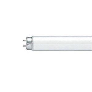 その他 (まとめ)Panasonic 蛍光灯 10W直管 FL10WF 白色 1本【×50セット】 ds-2178643
