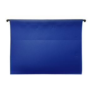 その他 (まとめ)ESSELTE PPハンギングフォルダ 5枚 ブルー 626105【×30セット】 ds-2179672