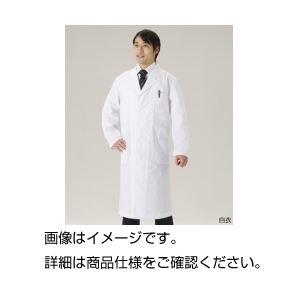その他 (まとめ)白衣 男子シングル LL【×3セット】 ds-1591810