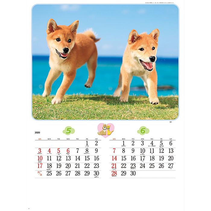 その他 【100個セット】カレンダー チャーミングメイト 2911829