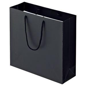 その他 (まとめ) TANOSEE マットコート手提げ袋 M ヨコ320×タテ300×マチ幅110mm ブラック 1パック(10枚) 【×10セット】 ds-2234785