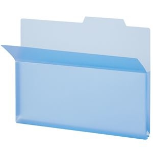 その他 (まとめ) TANOSEE PP製持ち出しフォルダーA4 ブルー 1パック(5冊) 【×30セット】 ds-2236499