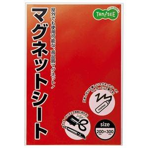 その他 (まとめ) TANOSEE マグネットカラーシートワイド 300×200×0.8mm 赤 1セット(10枚) 【×5セット】 ds-2223507