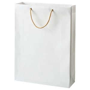 その他 (まとめ) TANOSEE ビニールカバー付手提げ袋 L ヨコ380×タテ510×マチ幅120mm 白無地 1パック(10枚) 【×5セット】 ds-2223600