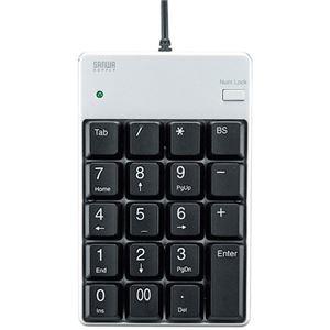 その他 (まとめ) サンワサプライ USBテンキー シルバーNT-17UPKN 1個 【×10セット】 ds-2223856