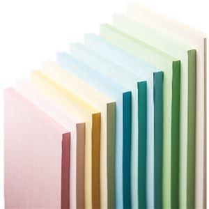 その他 (まとめ) 長門屋商店 Color Paper A3 中厚口 水 ナ-1210 1冊(100枚) 【×10セット】 ds-2224953