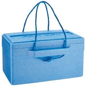 その他 (まとめ) 石山 発泡クールボックス 18.7L ブルー TI-180P 1個 【×10セット】 ds-2225526