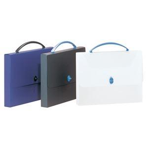 その他 (まとめ) ライオン事務器 デザインケース A4透明/ブルー DS-253 1個 【×10セット】 ds-2230954