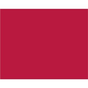 その他 (まとめ) ササガワ 包装紙 レッドアップル 半才判49-1113 1パック(50枚) 【×10セット】 ds-2231843