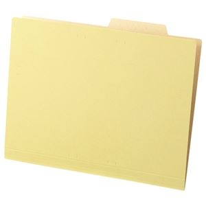 その他 (まとめ) TANOSEE 個別フォルダー(クラフト厚紙タイプ) A4 1パック(50冊) 【×10セット】 ds-2232970