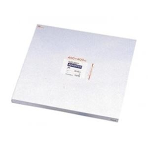 その他 クロマトグラフィー用ろ紙 No.50 400×400mm ds-2208828