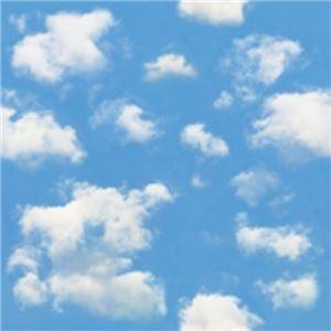 その他 (まとめ)カモ井加工紙 mt CASA シート壁用 空と雲の柄 MT03WS2309 3枚パック (×50セット) ds-2278127