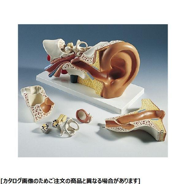 その他 日本スリービー・サイエンティフィック 平衡聴覚器モデル E10 11-2120-00【納期目安:1週間】
