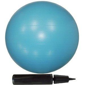 その他 【10個セット】エクササイズボール 65cm ブルー ds-2280367