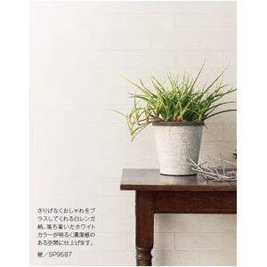その他 壁紙 のり無しタイプ サンゲツ SP-9587 92.5cm巾 45m巻 ds-2283837
