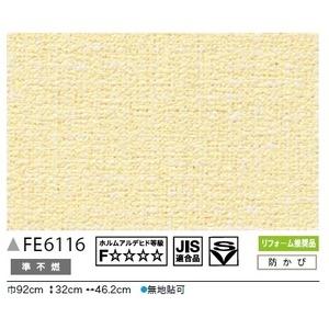 その他 カラー 無地調 のり無し壁紙 サンゲツ FE-6116 92cm巾 40m巻 ds-2283962